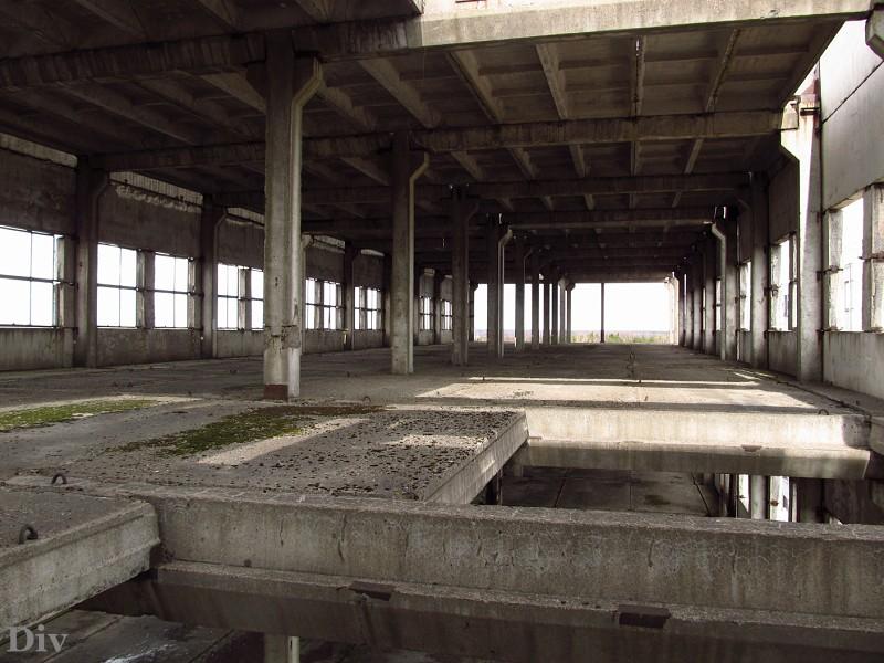 завод ладога в кировске фото