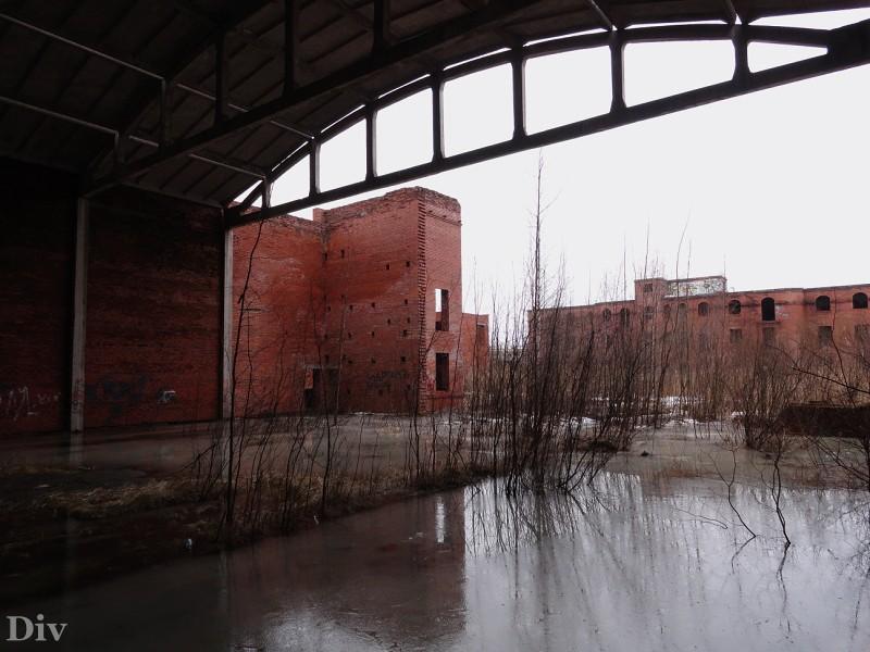 От центра санкт-петербурга в непосредственной близости от выставочного комплекса экспо форум.